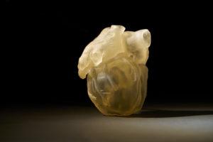 Stratasys lance une solution d'anatomie numérique pour les modèles anatomiques fonctionnels