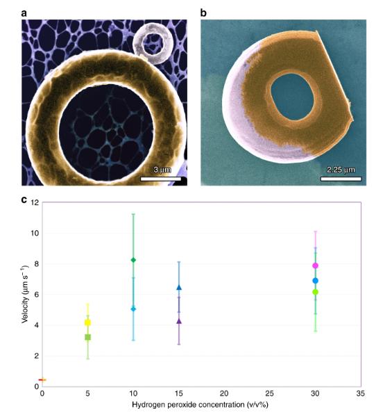 Systèmes de micro-distribution fonctionnels d'impression 3D: Microtoi de natation