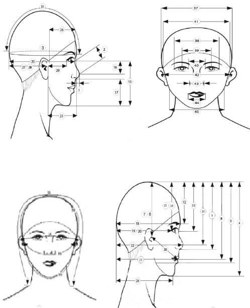 Des chercheurs coréens impriment des formes coréennes de tête pour la protection respiratoire contre la pollution