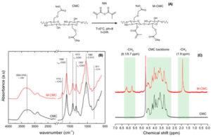 Bioprinting hydrogels biocompatibles à partir d'encres cellulosiques