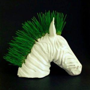 Planteuse de zèbres #3DPrinting #3Djeudi