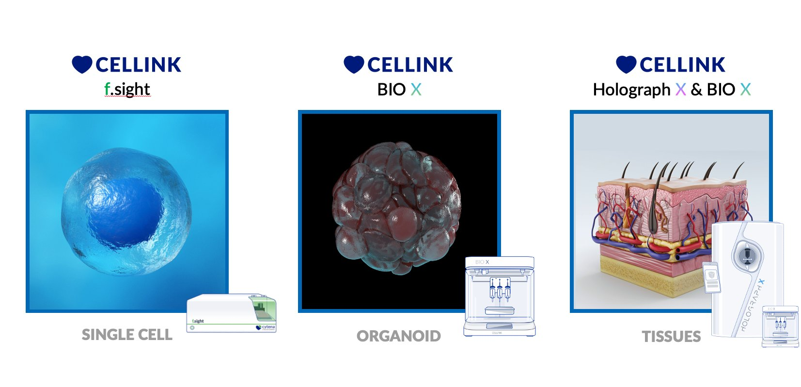 La filiale de Cellink, Cytena, va lancer la technologie mono-cellule « qui change la face du monde