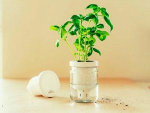 Jargar – Jardinière à eau en pot #3Imprimer #3DJeudi