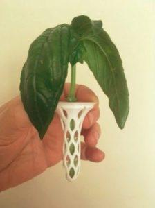 Aerogarden Pod pour cultiver sans éponges #3Dprinting #3DThursday